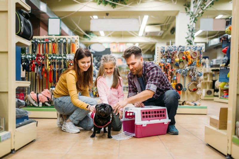 Vendeur Conseil Animalerie