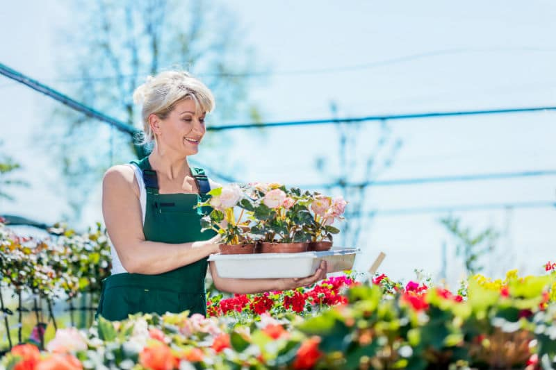 Devenir Vendeur En Jardinerie 2020 Metier Salaire Formation