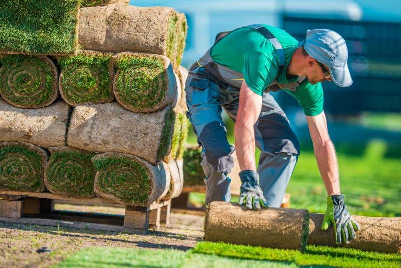 Ouvrier paysagiste qui pose une pelouse